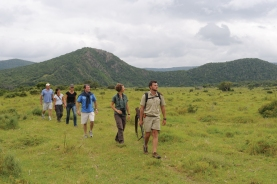 Walking Safari at Kariega Game Reserve