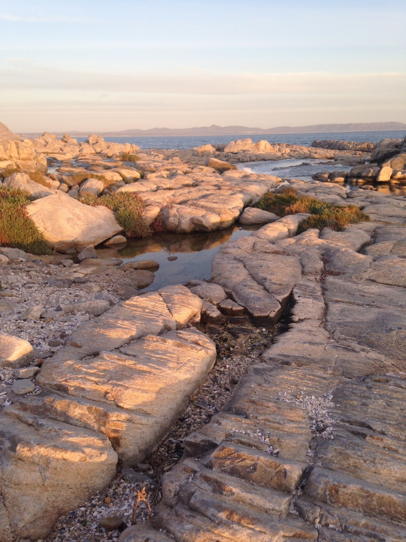 ps-rock-pools2